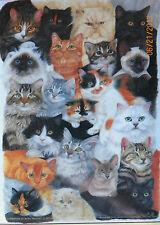 .PUZZLE.....JIGSAW.....HAYNES.....Cat Collage...300pc..