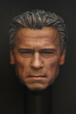 Custom 1/6 Scale Arnold T800 Guardian Head Sculpt For Hot Toys Body