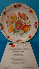 Iceland Poppy Plate by Margaret Stevens with Certificate