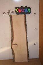 "2"" X 36"" Live Edge Hickory Wood Slab, wood working taxidermy lumber, H-445"