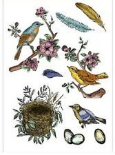 Clear Rubber Stamps - Birds, Feathers, Eggs - 1239 - Flowers - Nest - NEW