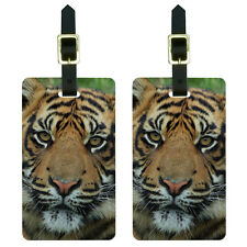 Bengal Tiger Luggage Suitcase Carry-On ID Tags Set of 2
