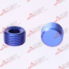 "3/4"" NPT Pipe Thread Allen Socket Plug blue AD61006 npt plug"
