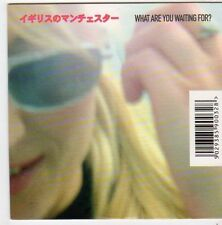 (FI679) Tribeca, What Are You Waiting For? - 2002 CD
