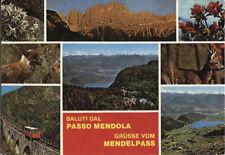 Alte Postkarte - Saluti dal Passo Mendola