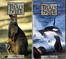 David Attenborough's The Trials Of Life - Growing Up & Hunting & Escaping; 2 VHS