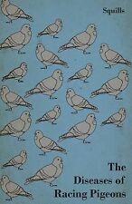 The Diseases of Racing Pigeons by Squills (2012, Paperback)