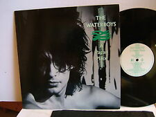 The Waterboys - A Pagan Place  ENCL 3  UK LP  1984  Ensign Mike Scott