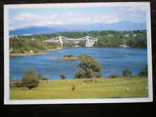 POSTCARD ANGLESEY TELFORDS ROAD BRIDGE & THE MENAI STRAITS