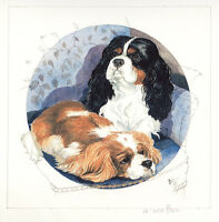 CAVALIER KING CHARLES ENGLISH TOY SPANIEL DOG FINE ART LIMITED EDITION PRINT