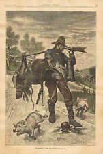 A.B. Frost, The Winner Of The Rifle Match, Pigs, Vintage 1882 Antique Art Print