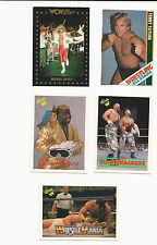 """Wrestling Trading Cards - Lot of 5: Taylor, Ware, Hayes, """"Bushwhackers"""""""