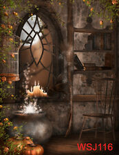 Halloween Thin Vinyl Studio Backdrop Photography Photo Background 5x7ft WSJ116