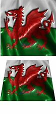 LOVELY 3D EFFECT WALES WELSH CYMRU DRAGON FLAG CERAMIC TILE TEAPOT PLANT STAND