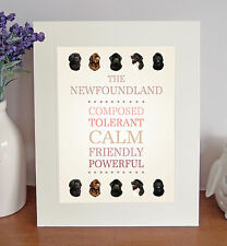 """Newfoundland 10"""" x 8"""" Free Standing Breed Traits Picture Mount Lovely Gift Idea"""