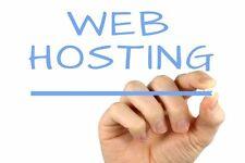 A Prepaid 1 year of SSD CPANEL Professional website Business Web Hosting