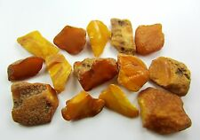 Lot of 15 Natural Rare Drops Genuine Baltic Amber Stones Nuggets 29.60 grams