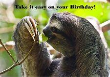 Sloth mignon animaux personnalisé imprimé anniversaire cartes drôle