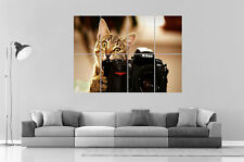 Funny Cat Camera NIKON Chat Drole  Wall Art Poster Grand format A0 Large Print