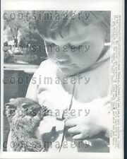 1961 Anne Wheeler of Minneapolis Feeds Baby Squirrel With Dropper Press Photo