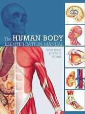 Human Body Identification Manual : Your Body and How It Works by Ken Ashwell...