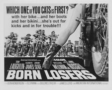 BORN LOSERS (1967) DVD TOM LAUGHLIN ACTION 1ST BILLY JACK MARTIAL ARTS