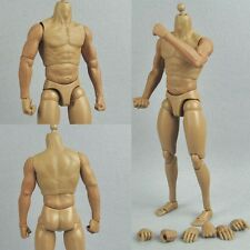 1/6 Scale Muscular Figure Body Similar to TTM19 For Hot Toys Head Sculpt