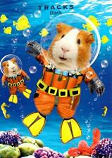 Diving Guinea Pigs Blank Greeting Card Fun Tracks Any Occasion Greetings Cards
