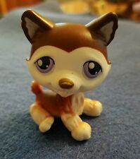 LITTLEST PET SHOP # 427 BROWN HUSKY PURPLE EYES CUTE