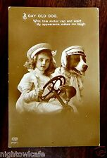 GAY OLD DOG Motor Cap & Scarf Girl at Wheel of Automobile Photo Postcard c1909