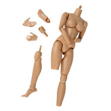 1/6 Scale M Breast Play Toy 1:6 Action Figure Nude Female Girl Body Adjustable