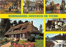 BR2096 Normandie Douceur de Vivre cow vaches  france