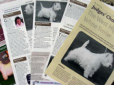 WEST HIGHLAND WHITE TERRIER KENNEL CLIPPINGS (incl Judges Choice article 04)x 40