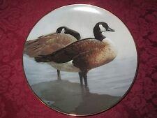 CANADA GEESE collector plate Rod Lawrence  Hamilton Colln WILDLIFE GOOSE Bird