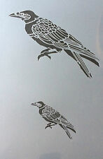 Crow bird Mylar Reusable Stencil Airbrush Painting Art Craft DIY home Decor