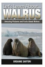 Let's Learn About: Walrus : Amazing Pictures and Facts about Walruses by...