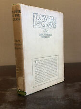 FLOWER O' THE GRASS By Ada Foster Murray - 1910 IN DUSTJACKET