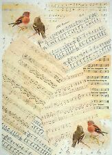 Rice Paper for Decoupage, Scrapbook Sheet, Craft Paper Singing Birds