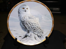 Spirit of the Arctic Plate Owls of North America. Brooks & Bentley