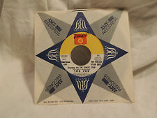 THE ZOO (standing On The) Sunset Strip / One Night Man Promo 45 7'' rock