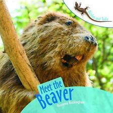 Meet the Beaver (Scales and Tails)