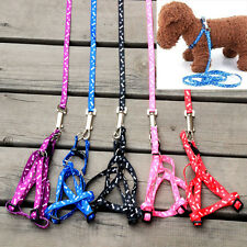 New Small Pet Dog Puppy Kitten Rabbit Flexible Nylon Harness Collar Leash Wire