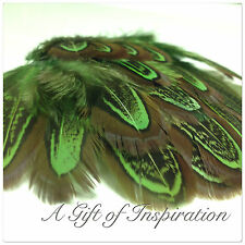 20 GREEN coloured 5-9cm Almond pheasant feathers for craft/millinery/flyfishing
