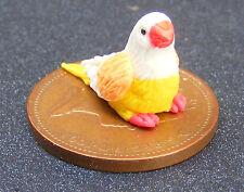 1:12 Polymer Clay Multi Colour Bird Doll House Miniature Garden Accessory R Feet