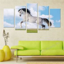 5 Modern printed horse painting canvas poster wall print decoration