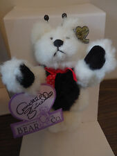Annette Funicello Bear Dotti NIB! Missing Certificate but never displayed