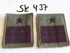 Italia armabzeichen nero su verde oliva 1 PAIA (sk437)