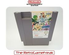 ■■■ Nintendo NES : Flintstones - (PAL-B) - Cart Only ■■■