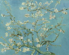 Vincent Van Gogh Almond blossom Giclee Canvas Print Paintings Poster Reproductio