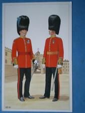 POSTCARD IRISH GUARDS - ADJUTANT MOUNTED GUARD ORDER & FIELD OFFICER